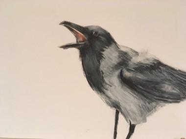 Wildlife drawing, animals, birds, oil bar, pencil, modern wildlife.
