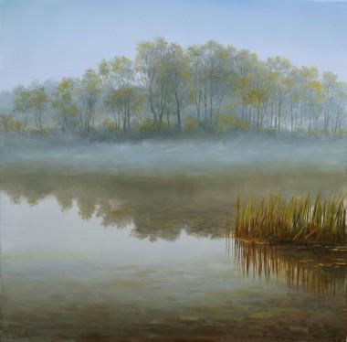 Landscape Morning Fog
