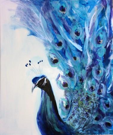Peacock contemporary