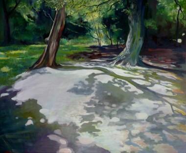 Tree Shadows - Epping