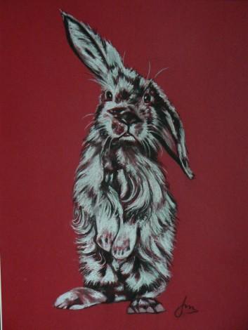 Stanley Rabbit