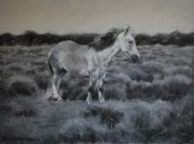 pastel painting new forest pony