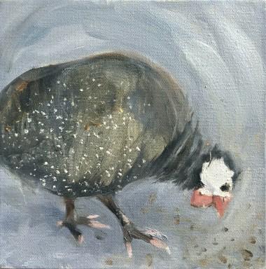 Guinea Fowl - two