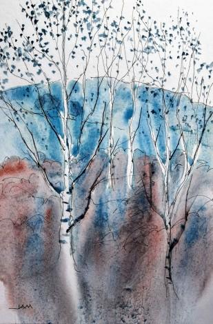 trees silver birches