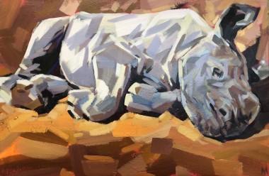 Sleeping baby rhino