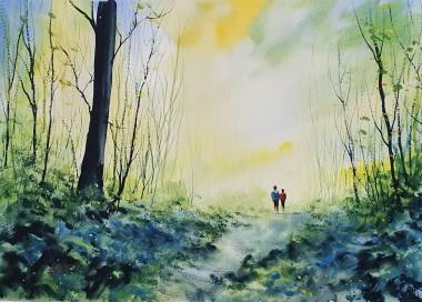 Stroll In Bluebell Woods