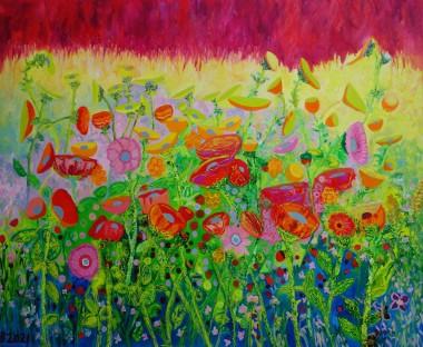 Summertime Meadow