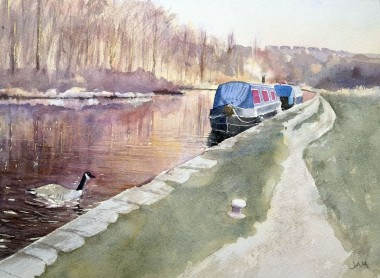 Narrowboats moored on canal, trees reflections goose