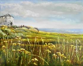 summer sun sea wild flowers Folkestone clifftops meadows historical