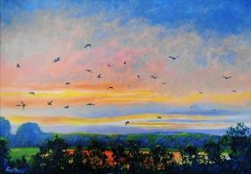 dawn sunrise red sky peaceful birds