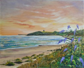 Sunset folkestone The Warren sea view peace wildflowers