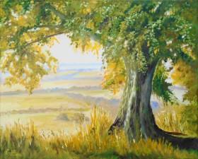 Summer, sunshine, trees, fields , UkK countryside, Affordable oil painting.