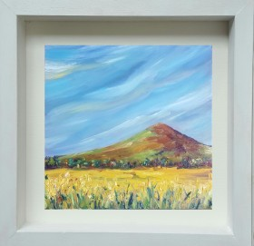Blue skies over yellow fields