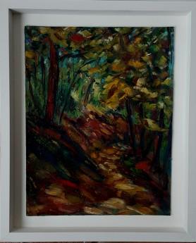 Autumn Colours in the Devil's Glen, Wicklow