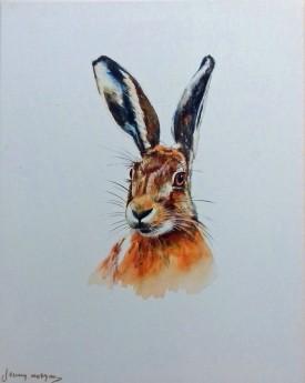 Hare Study 1