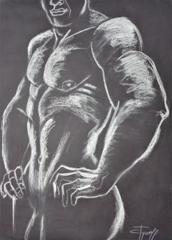frontal torso man nude