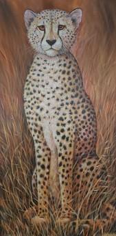 Cheetah front View