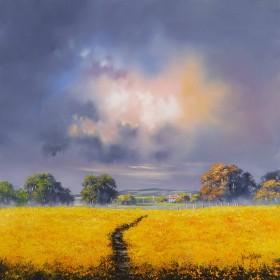 amber sunlight gold field