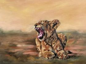 The lion cub