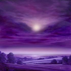 The Lilac Walk