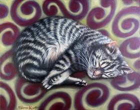Cat Swirl - My pet cat Gigi