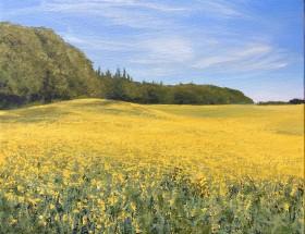 Rapeseed field painting, Rapeseed art,