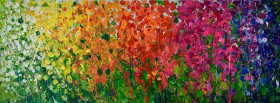 Peaceful Rainbow Meadow