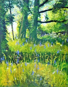 Sunlight and shadow, Wildflowers, Summer, affordable art, peacefiul,