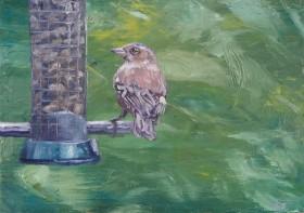 At the bird feeder