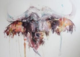African buffalo in watercolour