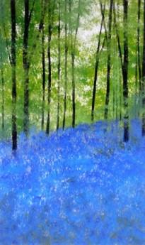 Bluebell Woods, South Warnborough Hampshire