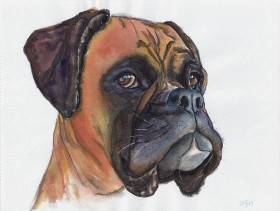 best friends, boxer dog art, boxer dog, dog lovers, animal,boxer,dog petportrait, watercolors, art, painting, jingArt, JingTian