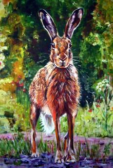 Broadlands Hare