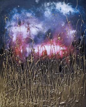 Cosmic Fields