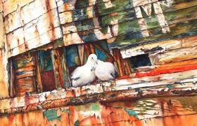 The Dove Boat