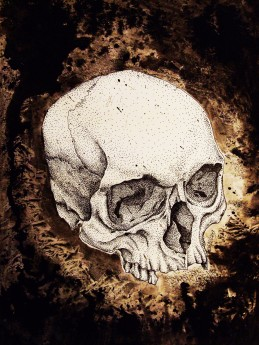 skull study No.6