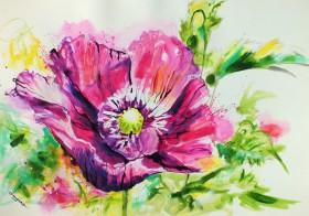 Purple Poppy oriental poppies flower art expressive floral painting original