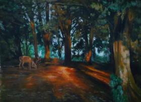 #Stag #Forest #woodland #sunset #wildlife #dusk #trees