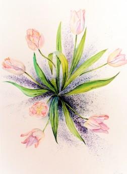 Botanical illustration,pink tulips