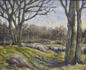 Woods near Burrator oil painting by David Mather