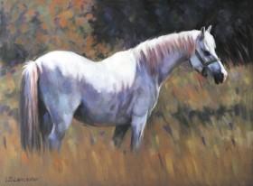 Grey Pony Pastel Painting