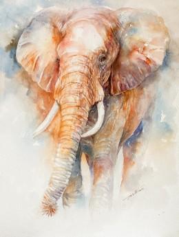 Ilinca the Elephant