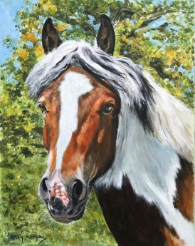 Painted pony portrait in the sun