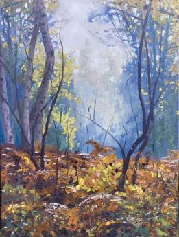 Autumn Woodland, Autumn colours, trees, treescape