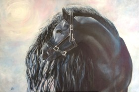 Black Horse in the Sun's Rays