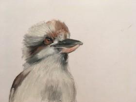 Wildlife drawing, animals, birds, oil bar, pencil.