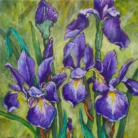 main view irises