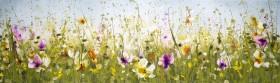 Joyous Meadow