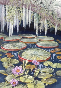 Jungle Water Lilies