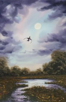 Mallard Duck In Moonlight